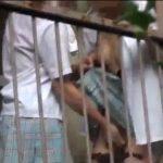 【盗撮レズ動画】素人ロリJKのレズビアンカップルが青姦で百合プレイし手マンする姿を盗撮